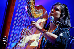 Harp player of The Barr Brothers (band) live performance at Bime Festival Stock Image
