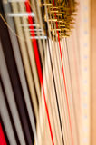 Harp strings close up Stock Images