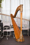 harpa Royaltyfri Fotografi