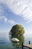 Harpe Insel Stockbild