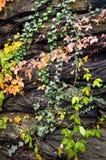 Harpers-Fähren-nationaler historischer Park Lizenzfreie Stockbilder