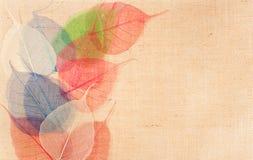 Harpillera con la decoración multicolora de las hojas Imagen de archivo libre de regalías