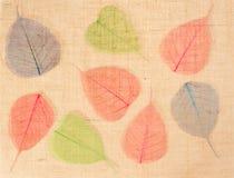 Harpillera con las hojas como decoración Foto de archivo libre de regalías