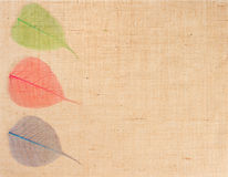 Harpillera con las hojas como decoración Fotos de archivo libres de regalías