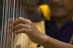 Harpist Photo stock