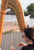 harpist Foto de Stock Royalty Free