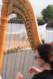 harpist Fotografia Stock Libera da Diritti