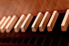 Harpsichord Keyboard Stock Images