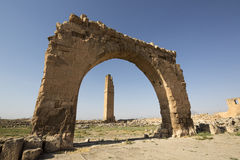 Harran Tumulus, Sanliurfa. Ruins of Harran University in Harran Tumulus, Sanliurfa, Turkey Stock Photo