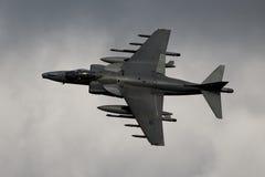 Harrier Photos libres de droits
