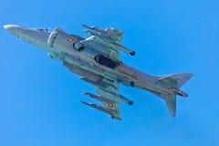 Harrier d'AV-8B plus Image stock
