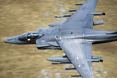 Harrier GR 9 RAF Royalty Free Stock Photos