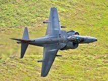 Harrier GR9 Stock Image