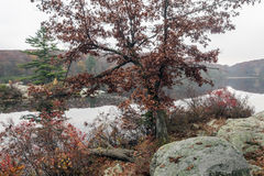 Harriman State Park, New York State Stock Photography
