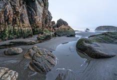 Harris Beach, Brookings, Oregon stock foto's
