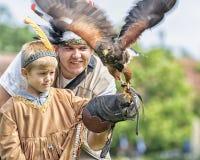 Harris`s hawk, bay-winged hawk, a medium-large bird of prey. Hawking remained. A hooded hawk on the boys gloved hand. Harris`s hawk, bay-winged hawk, dusky hawk stock photography