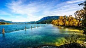 Harrison River på Harrison Mills, som det flödar till och med Fraser Valley royaltyfri fotografi
