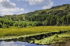 Harrop Tarn Stock Image
