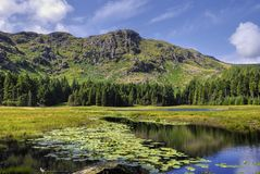 Harrop Tarn Royalty Free Stock Photography