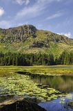 Harrop Tarn Stock Photos