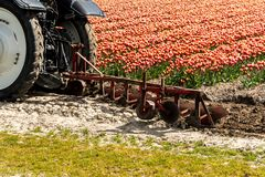 Harrowing tractor het tulpengebied royalty-vrije stock afbeeldingen
