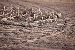 Harrows Stock Images