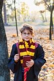 Harry Potter boy in glasses stands in autumn park with gold leaves, holds book in his hands royalty free stock image