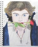 Harry Styles drawing with a rose. Harry Styles drawing of the band one direction with colors. Freehand drawing of singers and artists. Harry styles with a rose Royalty Free Stock Photography