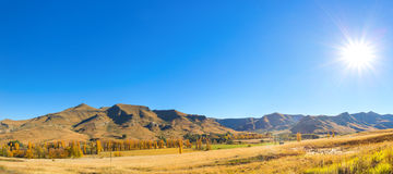 Harsh autumn sunshine. Near Clarens, South Africa royalty free stock images
