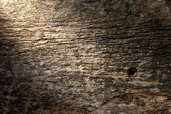 Harsh lighten weathered wood plank Stock Images