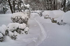 Winter landscape. Harsh winter with snow in Bucharest, capital of Romania Royalty Free Stock Images
