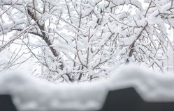 Harsh winter , Armenian . Harsh winter end snow , Armenian royalty free stock photography