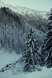 Harshest winter in the Alps Royalty Free Stock Image