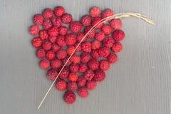 Hart of berries Stock Image