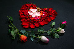 Hart dat door roze bloemblaadjes wordt gemaakt Stock Afbeeldingen