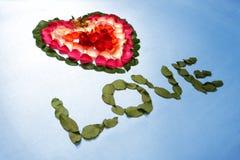 Hart dat door roze bloemblaadjes wordt gemaakt Stock Afbeelding