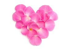 Hart dat uit roze bladeren wordt gemaakt royalty-vrije stock afbeeldingen