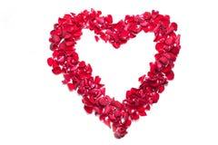 Hart dat van roze bloemblaadje wordt gemaakt Stock Foto's