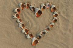 Hart dat van shells wordt gemaakt. Stock Fotografie