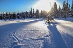 Hart in de sneeuw Royalty-vrije Stock Foto