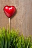 Hart en grassen op hout Royalty-vrije Stock Foto's