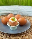 Hart gekochte Eier Stockbild