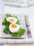 Hart gekochte Eier mit Petersilie lizenzfreie stockfotos
