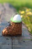 Hart gekochtes Ei im Spielzeugnest Stockfotografie