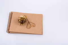 Hart gevormd blad, denneappel en een notitieboekje  Royalty-vrije Stock Afbeelding