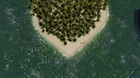 Hart gevormd eiland met palm vector illustratie