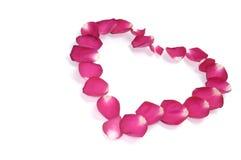 Hart-gevormd Patroon van Roze Bloemblaadjes Stock Afbeeldingen