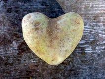 Hart gevormde aardappel Stock Fotografie