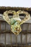 Hart gevormde decoratie op een rotandoos Stock Foto
