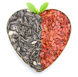Hart gevormde meloen & zonnebloemzaden Royalty-vrije Stock Afbeelding